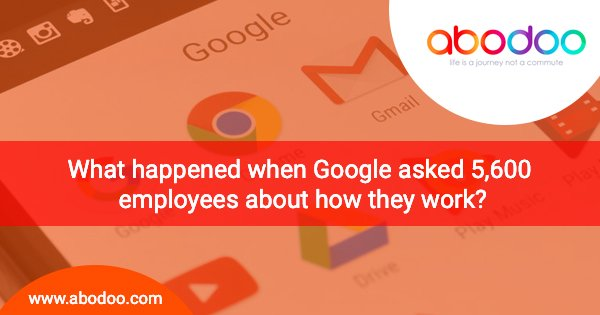 What happened when Google asked 5,600 employees about how they work?